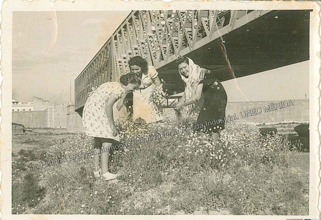cogiendo-flores-puente-de-hierro-0